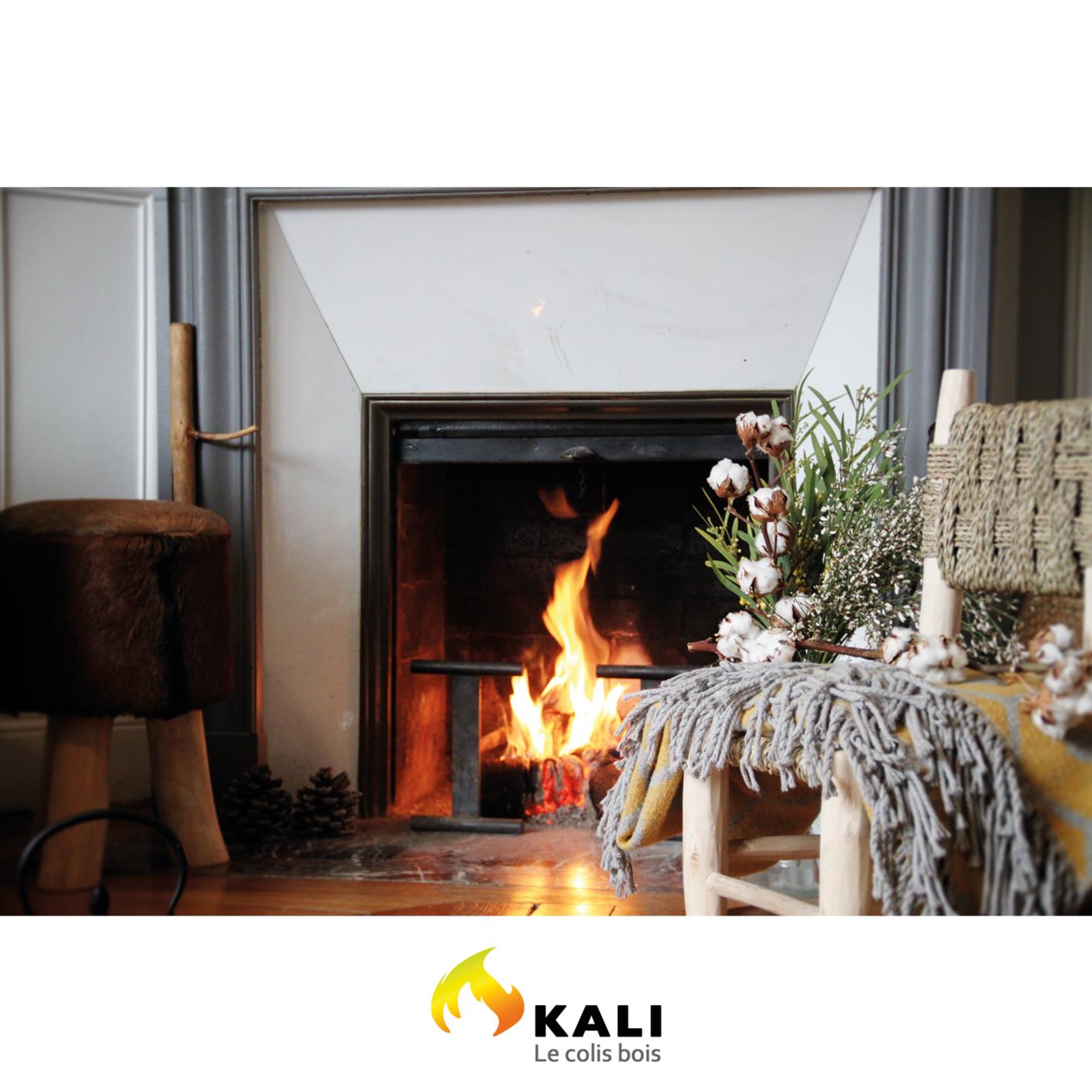 buche kali plus buche compacte ultra calorifique pour chemin e et poele. Black Bedroom Furniture Sets. Home Design Ideas